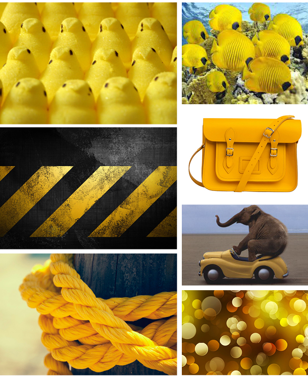 yellow peeps, yellow fish, yellow lines on tar, yellow purse, yellow car, yellow rope, yellow bokeh